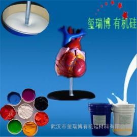 做人体器官模型的人体硅胶