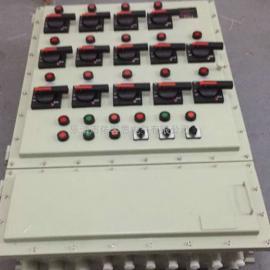 BXMP52 BXDP52防爆照明(动力)配电箱 防爆电箱