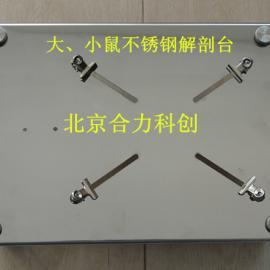 大小鼠解剖台HL-JPT-2.2 解剖板 不锈钢 现货
