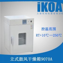 小型智能DHG-9070A数显电热鼓风恒温干燥箱烘烤老化箱