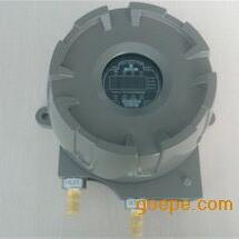 GERT-350Tx泵吸式气体探测器GERT-350Tx