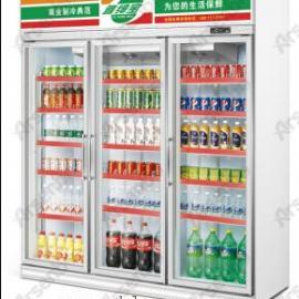 佛山雅绅宝制冷设备冷柜厂家/饮料水柜/冰箱图片/品牌冰箱