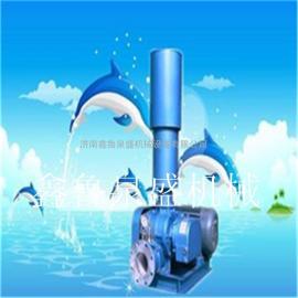 65型负压罗茨鼓风机价格 山东优质高效率负压罗茨风机厂家