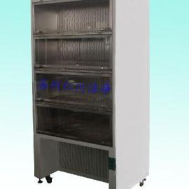 专业生产石英舟保管柜,石墨舟保管柜,石英器材保管柜,洁净柜,