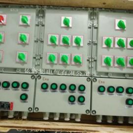 多个回路防爆照明配电箱BP51-19K防爆动力箱