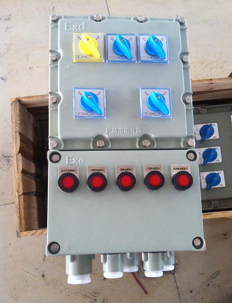 2路防爆照明配电箱 25A防爆控制箱