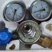 现货热销YQQ-09氢气减压器