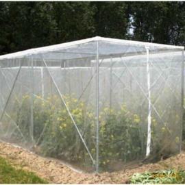 中国安平6-60目蔬菜种植防虫网乙烯网