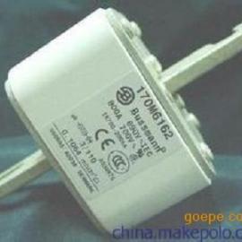 美国进口低压快速巴斯曼170M3408熔断器