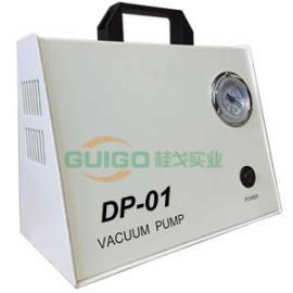 无油真空泵DP-01