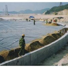 福建,输油管道基础防渗用2mm厚HDPE土工膜