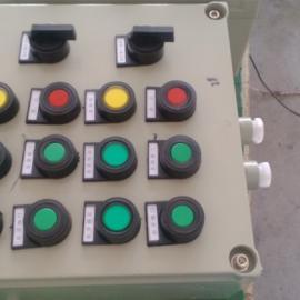 BXK-4组按钮,2组指示灯,1组开关,防爆控制箱