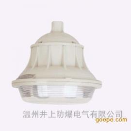 FGL-L-W50防水防尘防腐无极灯