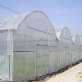 20-60目乙烯防虫网 白色绿色等可选 用于蔬菜大棚防虫
