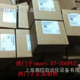 SMART PLC 6ES7288-2DT32-0AA0