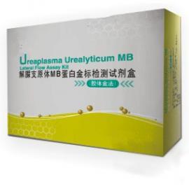 解脲支原体MB蛋白金标检测试剂盒(胶体金法