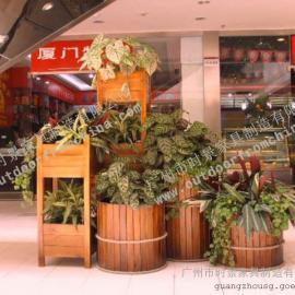 惠州步行街木制花箱,隔离带塑木花箱,户外实木花箱