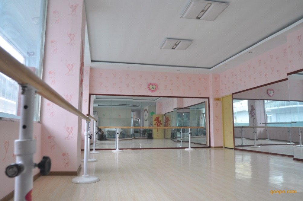 小学实验室功能室成套设备 > 功能室定制,广视通设计定制舞蹈室把杆