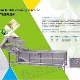 高效率菜椒/辣椒清洗机制造专家利特机械