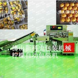 选果机配套-全自动柠檬包装机-高速柠檬包装机