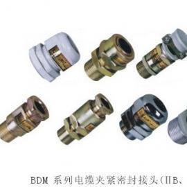 BDM-II-G3/4防爆电缆夹紧密封接头