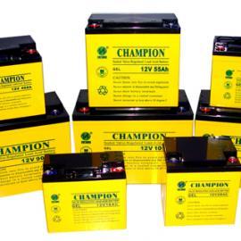 北京冠军标准电池NP100-12,12V100AH/20HR