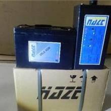 海志蓄电池HZY12-100长春总经销