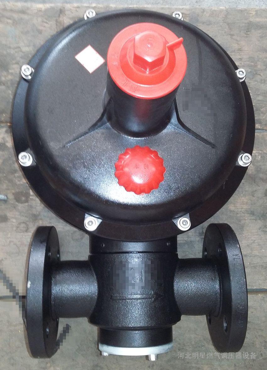 山东庆云锅炉燃气调压器
