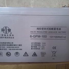 江苏双登蓄电池6-GFM-100,12V100AH阀控铅酸
