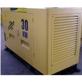 YT2-30KVA伊藤柴油发电机
