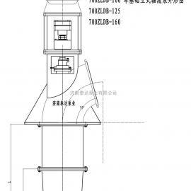 700ZLDB-125单基础轴流泵