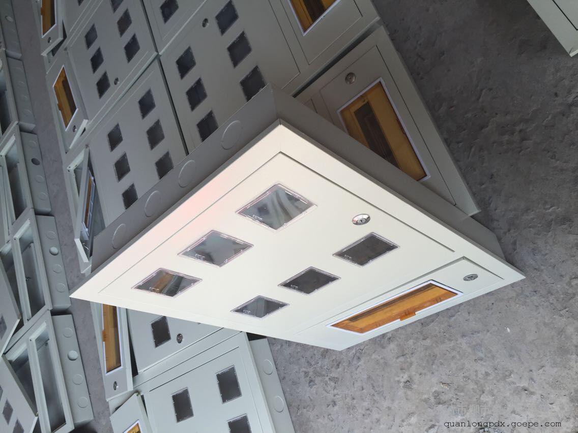 泉龙专业生产PZ40单户电表箱明装暗装6表位上下门