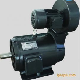 YLJ-132-40/6力矩电机