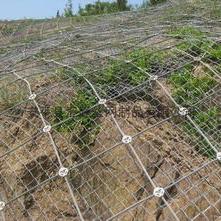 镀锌边坡防护网