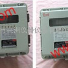 XZOY-04GBEXD-Ⅲ防爆氧化锆氧量分析仪