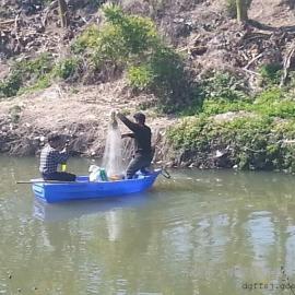 江苏塑料船 苏州塑料渔船厂家 3.2米电动捕鱼船