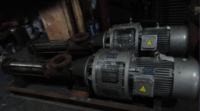 【FG20-2不锈钢螺杆污泥泵】