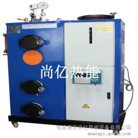 50公斤全自动生物质蒸汽发生器