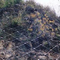 河蚌河道石笼网六角拧花网黄山镀锌石笼网抗洪网