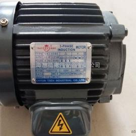 3-PHASE INDUCTION MOTOR马达C10-43B0