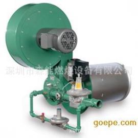Winnox燃烧器,ECLIPSE天时燃烧器,深圳森能燃烧器系统工程