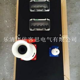 带微断防水防尘防腐电源插座箱FXS-2/63K