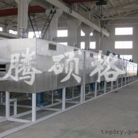 芭蕉片风干机、带式风干设备首选北京腾硕格