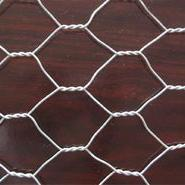 304不锈钢材质菱形网 316不锈钢勾花网