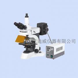 YG-800实验室荧光显微镜 临床诊断、教学实验、病理检测