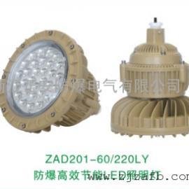 ZAD201-60/220LY防爆高效�能LED照明��