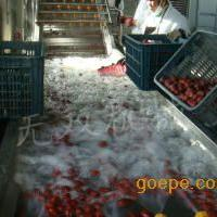 买红枣清洗机选无双机械 特价优惠 品质保证!