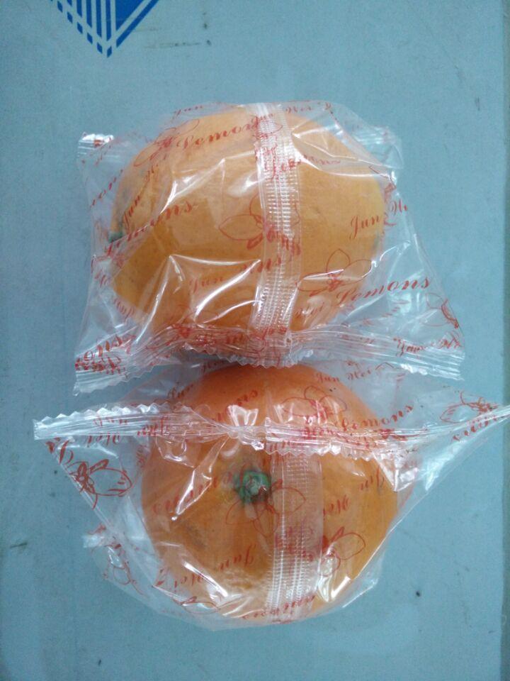 自动水果包装机-脐橙包装机-精品水果包装机
