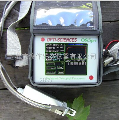 OS-5p便携式脉冲调制叶绿素荧光仪/荧光效能