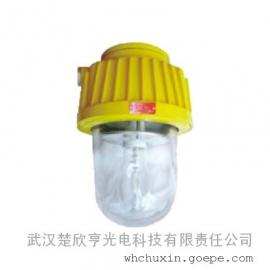 BPC8730-N70-70w/220v防爆高压钠灯